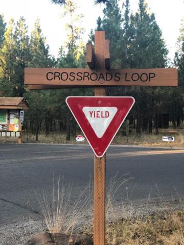 14567 Crossroads Loop, Sisters, OR 97759 (MLS #201807975) :: The Ladd Group