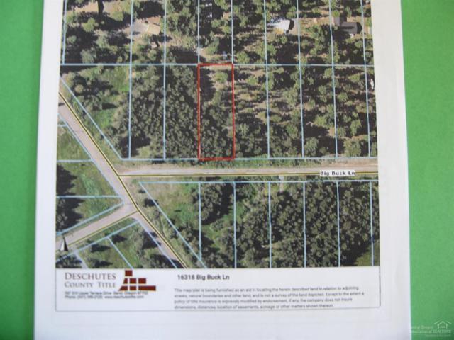 16318 Big Buck Lane, Bend, OR 97707 (MLS #201810336) :: Team Birtola | High Desert Realty