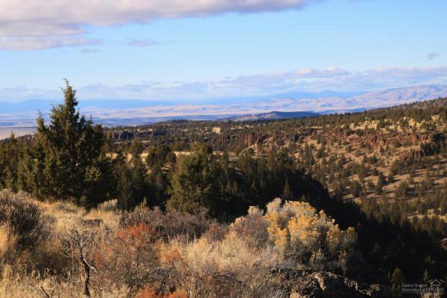 0 Hay Creek Road, Ashwood, OR 97711 (MLS #201811155) :: Team Birtola | High Desert Realty