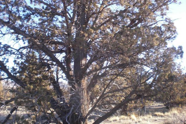 0 NW Cascade Way Lot 40, Prineville, OR 97754 (MLS #201811247) :: Team Birtola | High Desert Realty