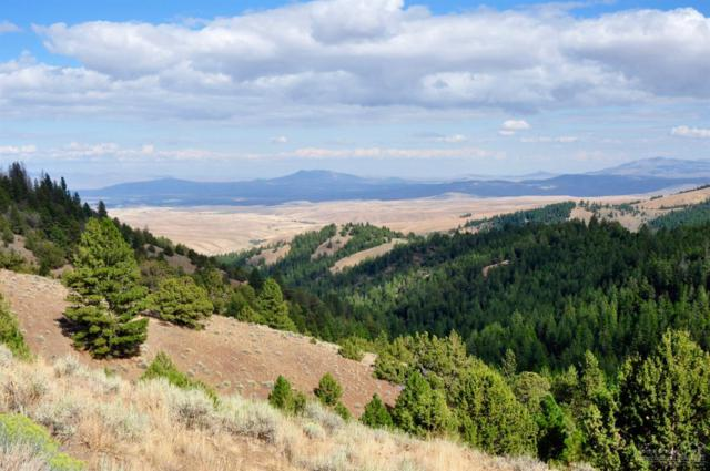 0 Highway 26, Ironside, OR 97908 (MLS #201811755) :: Fred Real Estate Group of Central Oregon