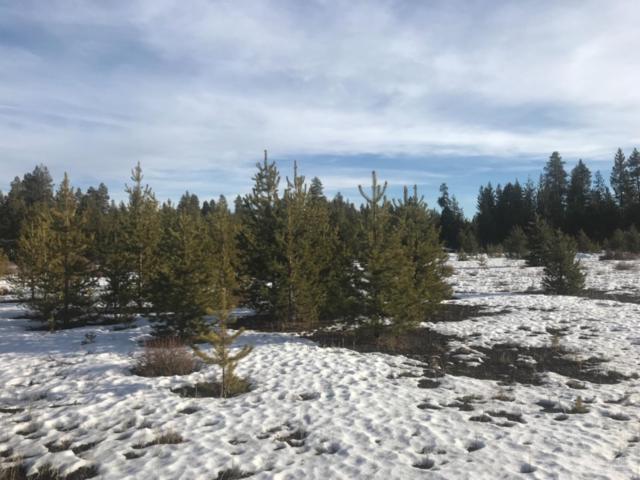 15855 Burgess, La Pine, OR 97739 (MLS #201900554) :: Fred Real Estate Group of Central Oregon