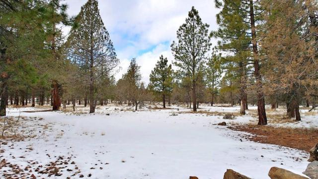 1 Buffalo Drive, Sisters, OR 97759 (MLS #201901095) :: Fred Real Estate Group of Central Oregon