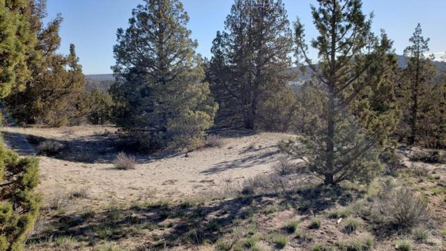 0 SE Weatherby Loop Tl 7400, Prineville, OR 97754 (MLS #201903011) :: Stellar Realty Northwest