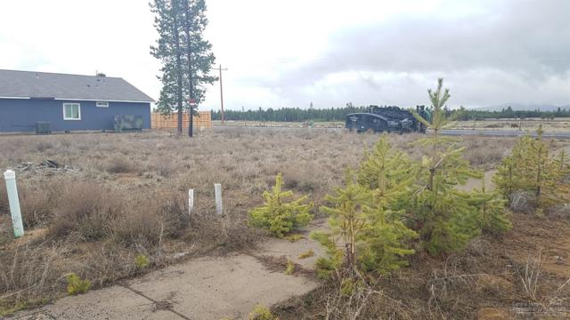 51241 Riley Drive, La Pine, OR 97739 (MLS #201903163) :: Team Birtola | High Desert Realty