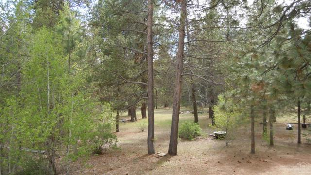 39 Shoshoni Drive, Chiloquin, OR 97624 (MLS #201903896) :: The Ladd Group
