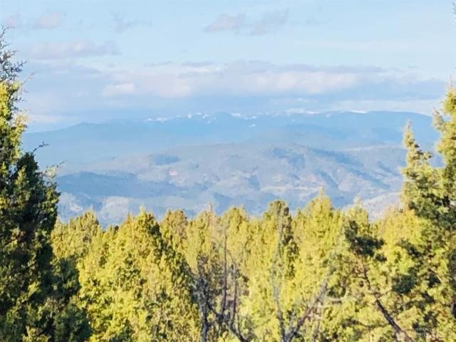 20741 SE Eagle View Road, Prineville, OR 97754 (MLS #201904456) :: The Ladd Group