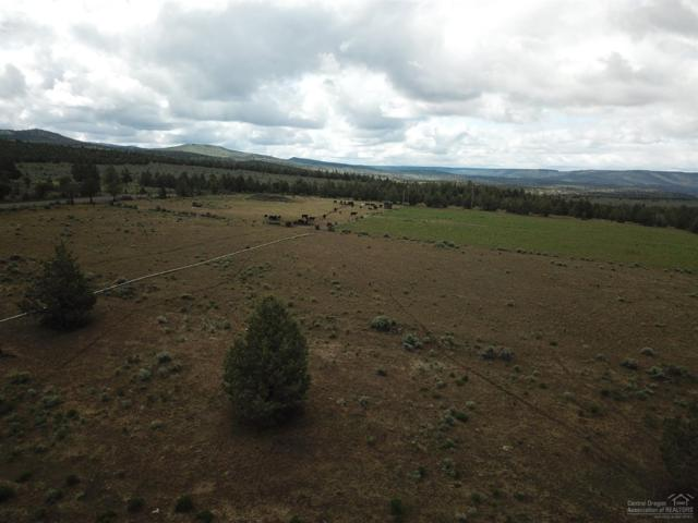 0 SE Salt Creek Road, Prineville, OR 97754 (MLS #201904502) :: Team Birtola | High Desert Realty