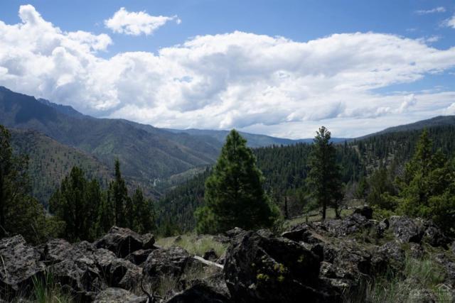 0 NE Adams Drive Tl 600, Canyon City, OR 97820 (MLS #201905153) :: Stellar Realty Northwest