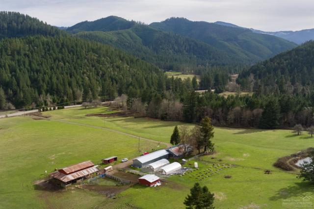 6588 Upper Cow Creek Road, Azalea, OR 97410 (MLS #201906409) :: Central Oregon Home Pros