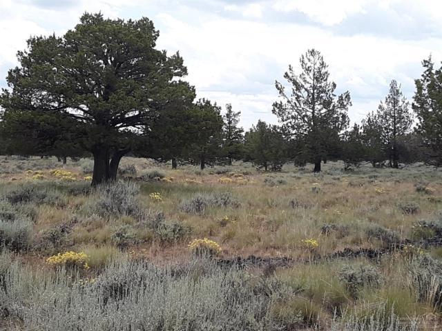 0 SE Gravett Road Tl800, Prineville, OR 97754 (MLS #201906697) :: Team Birtola   High Desert Realty