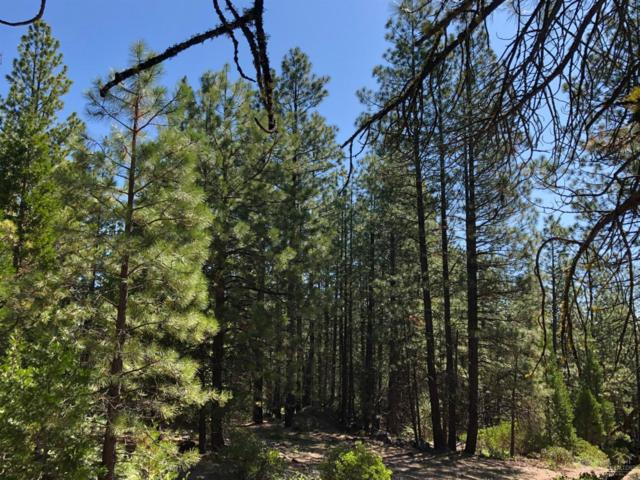 0 Bly Mountain, Bly, OR 97622 (MLS #201907957) :: Team Birtola | High Desert Realty