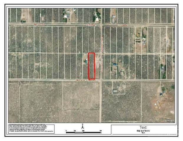 13500 Thorn Lot, Christmas Valley, OR 97641 (MLS #202001216) :: Stellar Realty Northwest