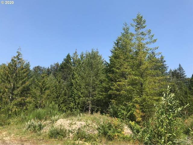 64390 E Brightwood Loop Road, Brightwood, OR 97011 (MLS #202002640) :: Fred Real Estate Group of Central Oregon