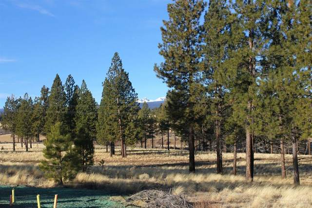 61847-Lot 376 Hosmer Lake Drive, Bend, OR 97702 (MLS #202003086) :: The Ladd Group