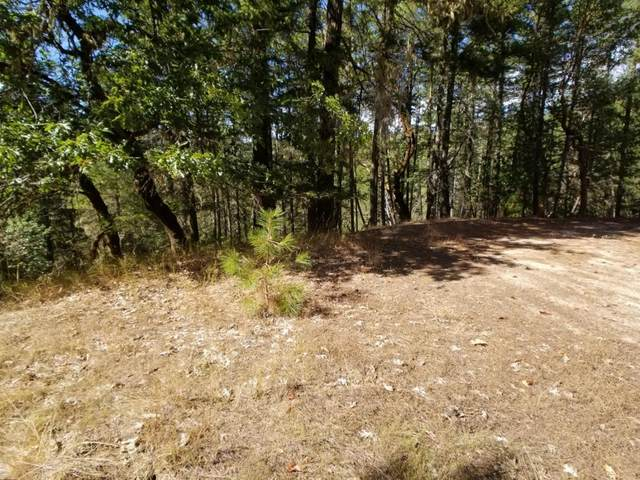 16740 Ford Rd Road, Rogue River, OR 97537 (MLS #220101469) :: Rutledge Property Group