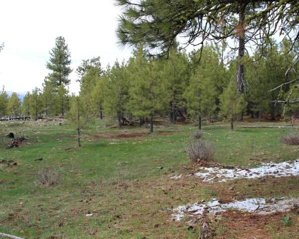 0 Quartz Mountain Pass - 157.73, Lakeview, OR 97630 (MLS #220101507) :: Bend Homes Now