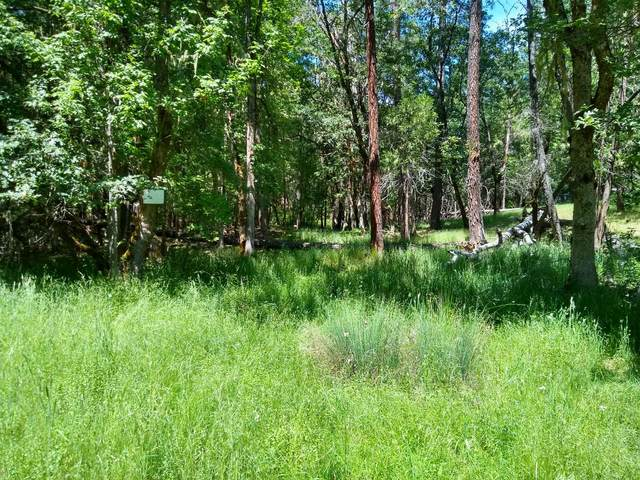 5490 Tunnel Loop Road, Grants Pass, OR 97526 (MLS #220102138) :: Central Oregon Home Pros