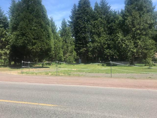 285 Mill Creek Drive, Prospect, OR 97536 (MLS #220102926) :: FORD REAL ESTATE