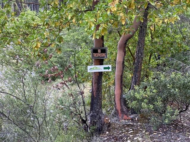12500 Redwood Highway Highway, Wilderville, OR 97543 (MLS #220103073) :: FORD REAL ESTATE