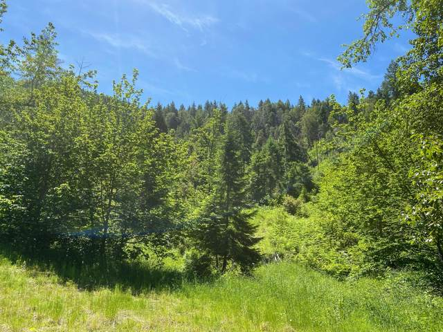 Ranchero Road, Azalea, OR 97410 (MLS #220103075) :: Stellar Realty Northwest