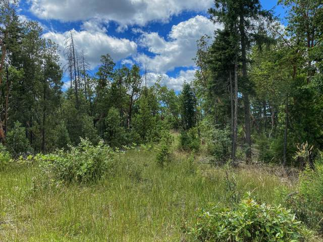 0 Forest Creek Tl11000a Road, Jacksonville, OR 97530 (MLS #220104024) :: FORD REAL ESTATE