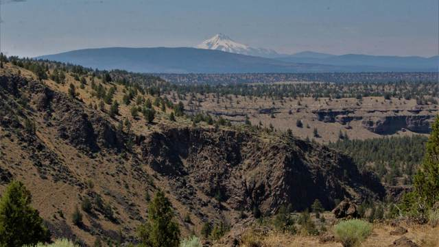 12621 NW Dove Road, Terrebonne, OR 97760 (MLS #220104256) :: Fred Real Estate Group of Central Oregon