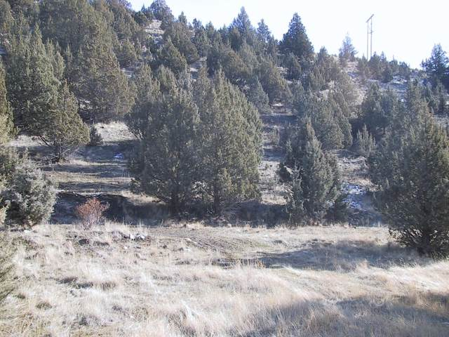 Lot 712 Lot 712 Patterson Drive, Canyon City, OR 97820 (MLS #220104626) :: The Payson Group