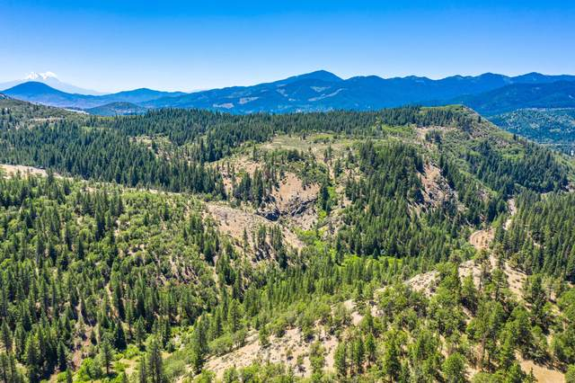 1979 Colestin Road, Ashland, OR 97520 (MLS #220104969) :: FORD REAL ESTATE