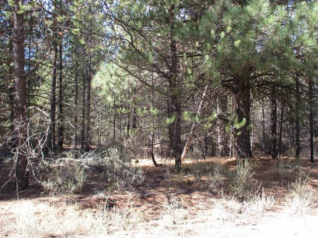 Green Forest Drive, Chiloquin, OR 97624 (MLS #220105124) :: The Riley Group