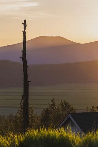 973 Beattys Butte Drive, Klamath Falls, OR 97601 (MLS #220105176) :: Coldwell Banker Bain