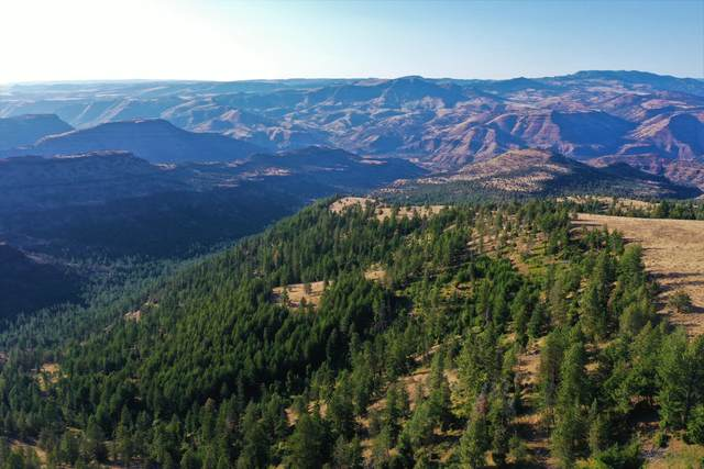 Rowe Creek Road, Fossil, OR 97830 (MLS #220105545) :: The Ladd Group
