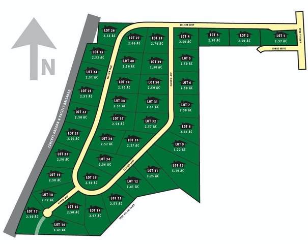 35 Ellison Loop, Merlin, OR 97532 (MLS #220105642) :: Vianet Realty