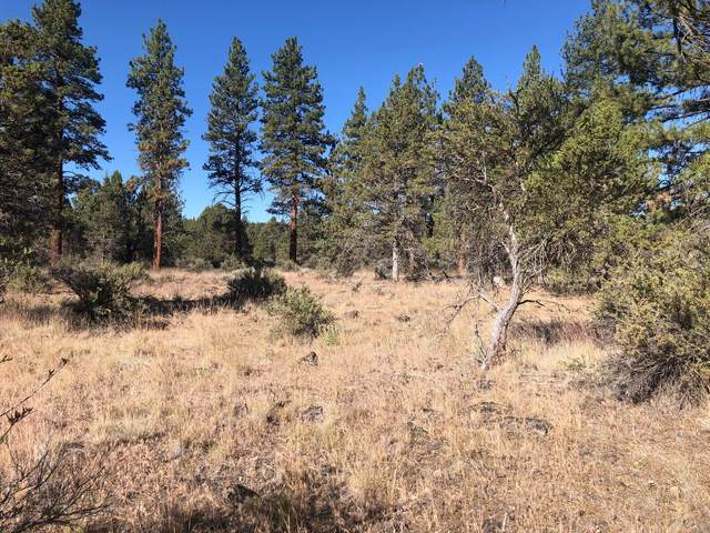 Ruddy Duck Drive Lot 9, Bonanza, OR 97623 (MLS #220106090) :: Central Oregon Home Pros