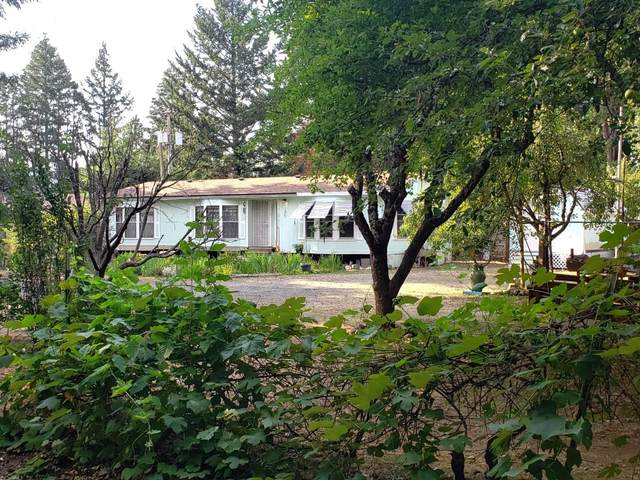 283 S Old Stage Road, Cave Junction, OR 97523 (MLS #220106340) :: The Ladd Group