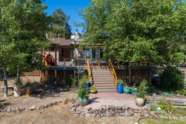 4500 NE Mckay Creek Road, Prineville, OR 97754 (MLS #220106453) :: Fred Real Estate Group of Central Oregon