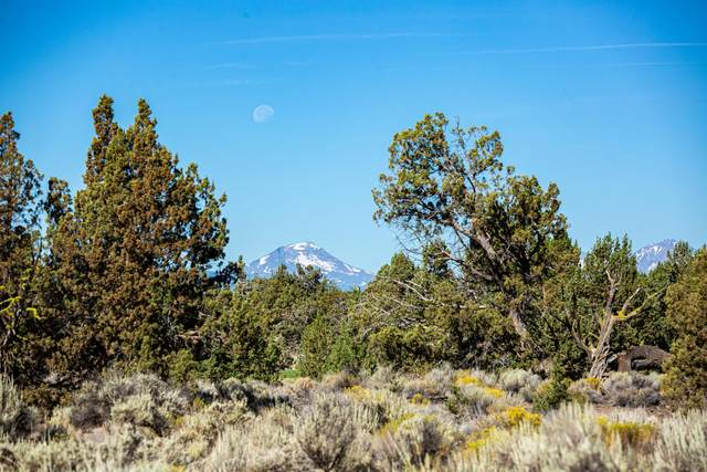 65765 Pronghorn Estates Drive Lot 24, Bend, OR 97701 (MLS #220106833) :: Fred Real Estate Group of Central Oregon