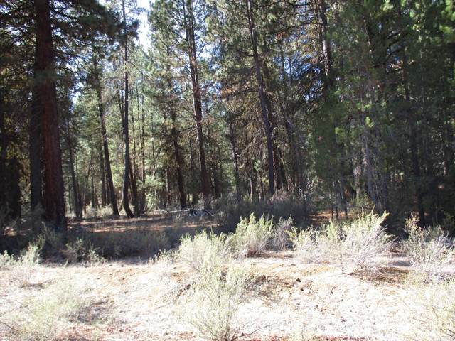 Green Forest Drive, Chiloquin, OR 97624 (MLS #220106963) :: Coldwell Banker Sun Country Realty, Inc.