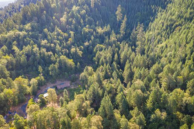 375 Weekly Drive, Grants Pass, OR 97527 (MLS #220107191) :: Bend Relo at Fred Real Estate Group