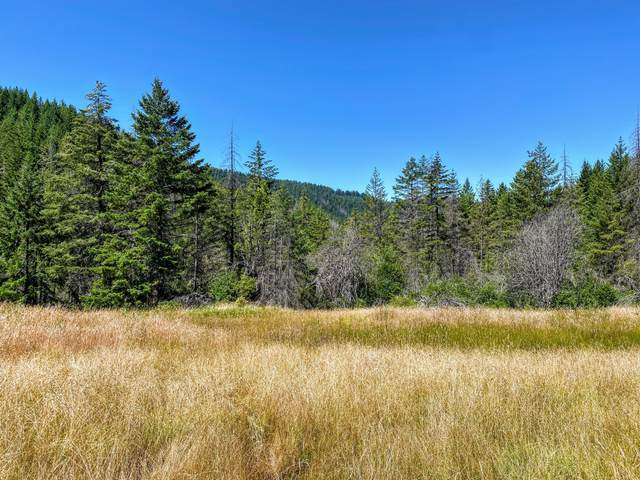 6000 Diamond Rock Road, Tiller, OR 97484 (MLS #220107234) :: Stellar Realty Northwest