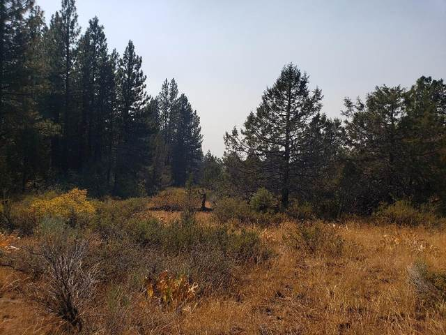 Lot 4 & 5 Guanaco Lane, Bonanza, OR 97623 (MLS #220107769) :: Premiere Property Group, LLC