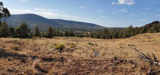 16550 SE Zaltana Drive, Prineville, OR 97754 (MLS #220107976) :: Team Birtola | High Desert Realty