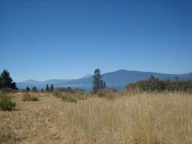 Lot 21 Glen Drive, Chiloquin, OR 97624 (MLS #220108341) :: Team Birtola | High Desert Realty