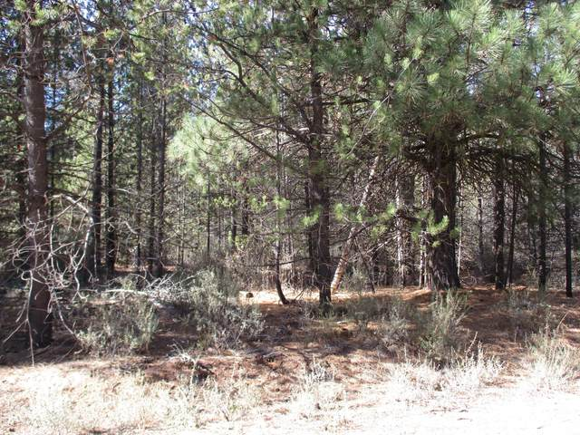 lot3 Green Forest Drive, Chiloquin, OR 97624 (MLS #220108398) :: The Riley Group