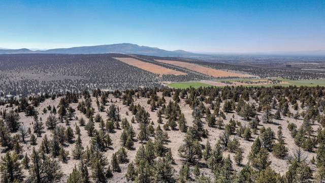 20 Meyers Butte, Prineville, OR 97754 (MLS #220108741) :: Berkshire Hathaway HomeServices Northwest Real Estate