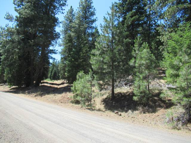 Christopher Road, Keno, OR 97627 (MLS #220108887) :: Vianet Realty