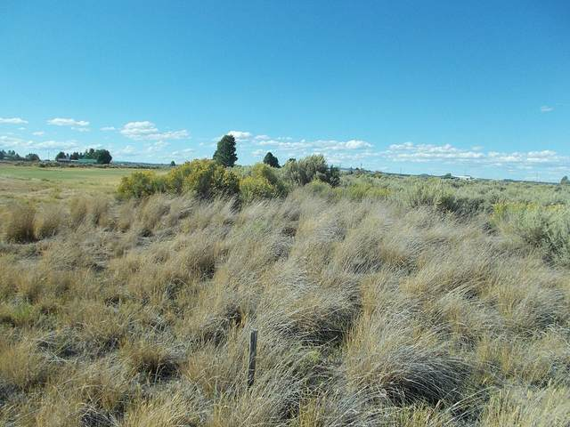 Lot 4900 Shepherd Lane, Christmas Valley, OR 97641 (MLS #220108988) :: Windermere Central Oregon Real Estate