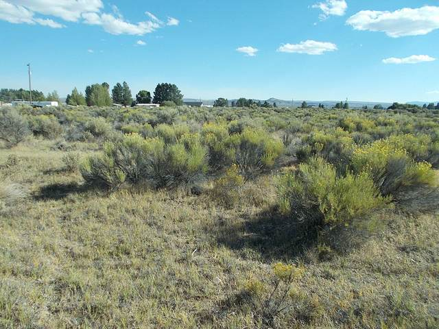 Lot 600 Sagebrush Lane, Christmas Valley, OR 97641 (MLS #220108990) :: Bend Homes Now