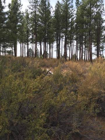 Block 8 Oregon Pines, Chiloquin, OR 97624 (MLS #220109009) :: Bend Relo at Fred Real Estate Group