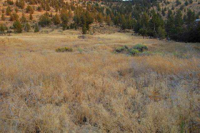 TL 7600 Crestview Road, Prineville, OR 97754 (MLS #220109027) :: The Riley Group